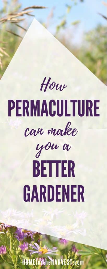 How Permaculture Can Make You a Better Gardener   Home for the Harvest