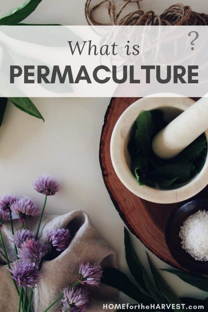 What is Permaculture?   Organic Gardening   Home for the Harvest