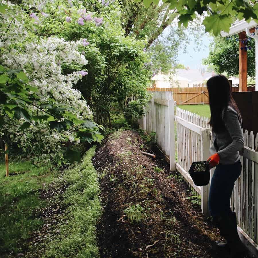 Urban Hugelkultur How To Make An Eco Friendly Raised