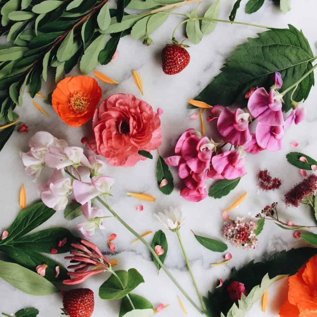 Organic Gardening | Home for the Harvest Gardening Blog