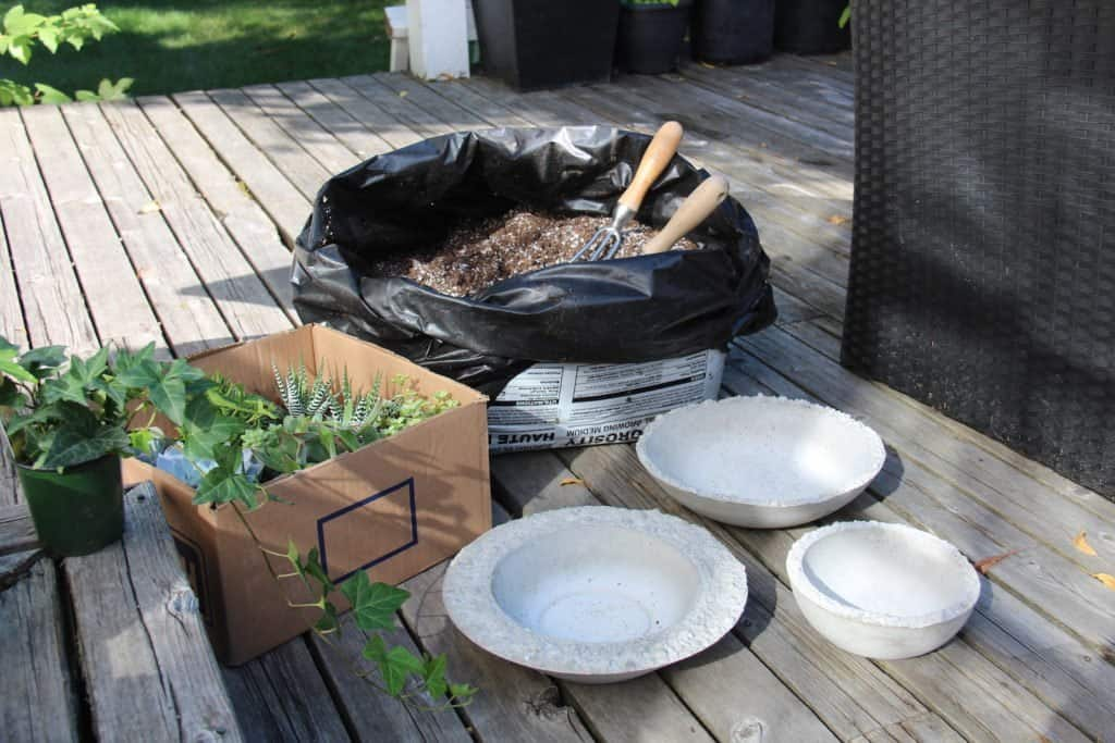 empty succulent bowl collection with succulent plants and bag of potting soil for succulents on patio