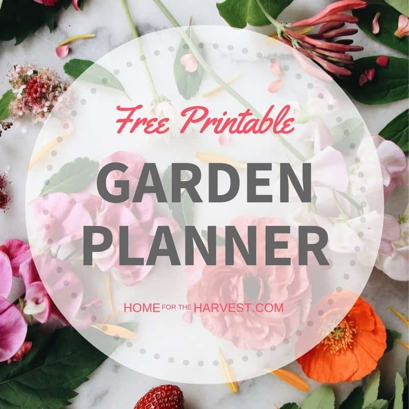 image regarding Free Printable Garden Planner referred to as Totally free Vegetable Backyard Planner - Property for the Harvest