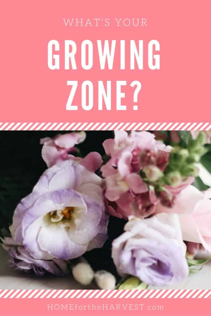 What's Your Growing Zone? | Home for the Harvest