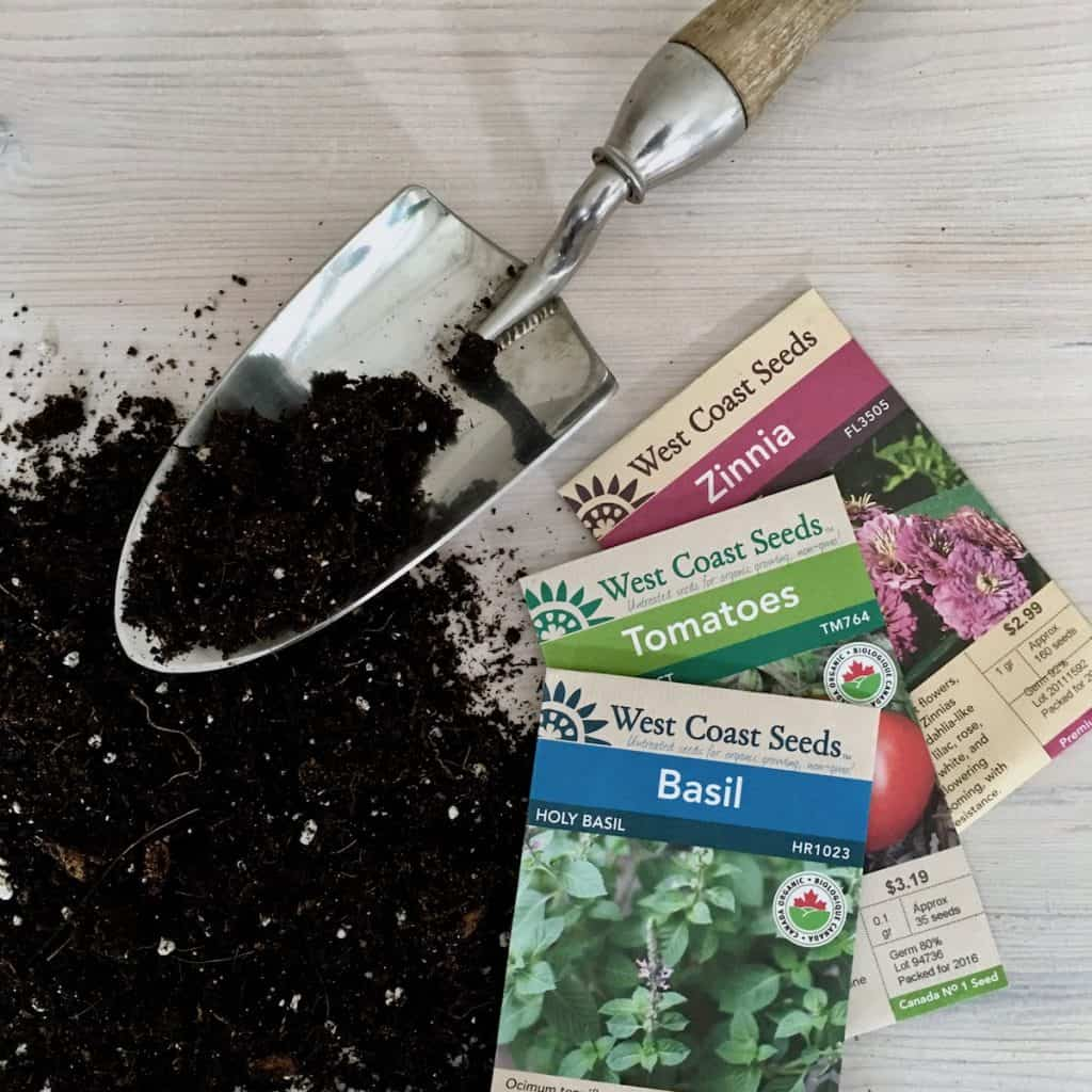 Seed Starting Guide: How to Grow Seedlings from Seed | Home for the Harvest