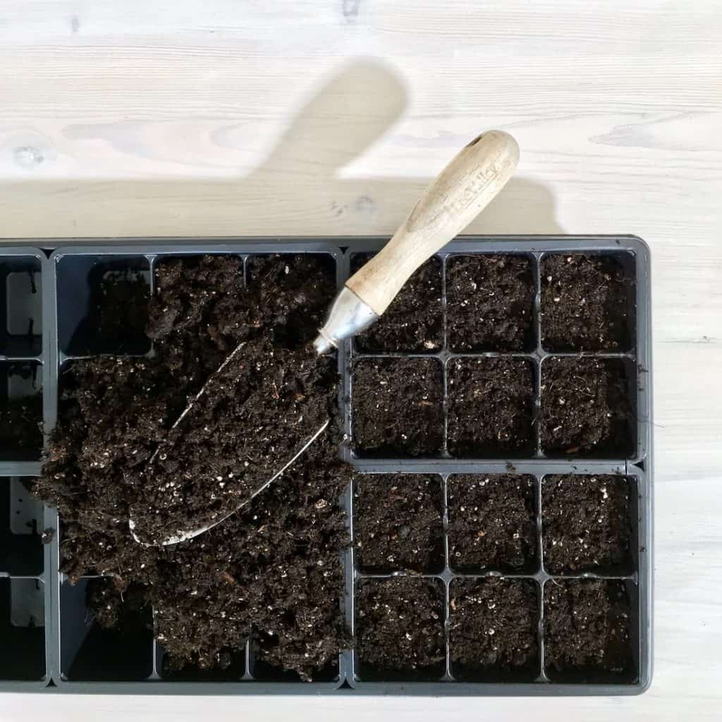Seed Starting Guide: Soil-Free Mixes | Home for the Harvest