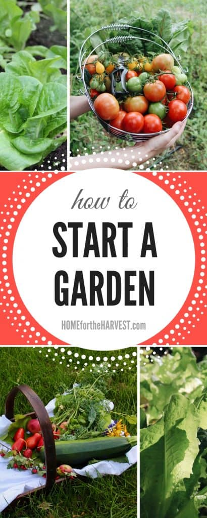 In-Depth Tutorial About How to Start a Garden - Includes Garden Planning, Planting, Care, and Harvest | Home for the Harvest