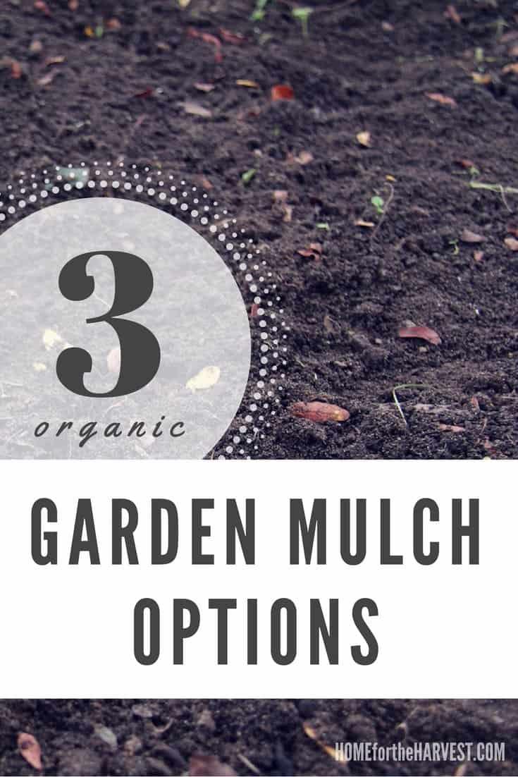 Better Organic Mulch Options