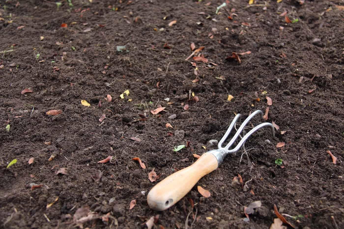 Gardening 101 Home For The Harvest