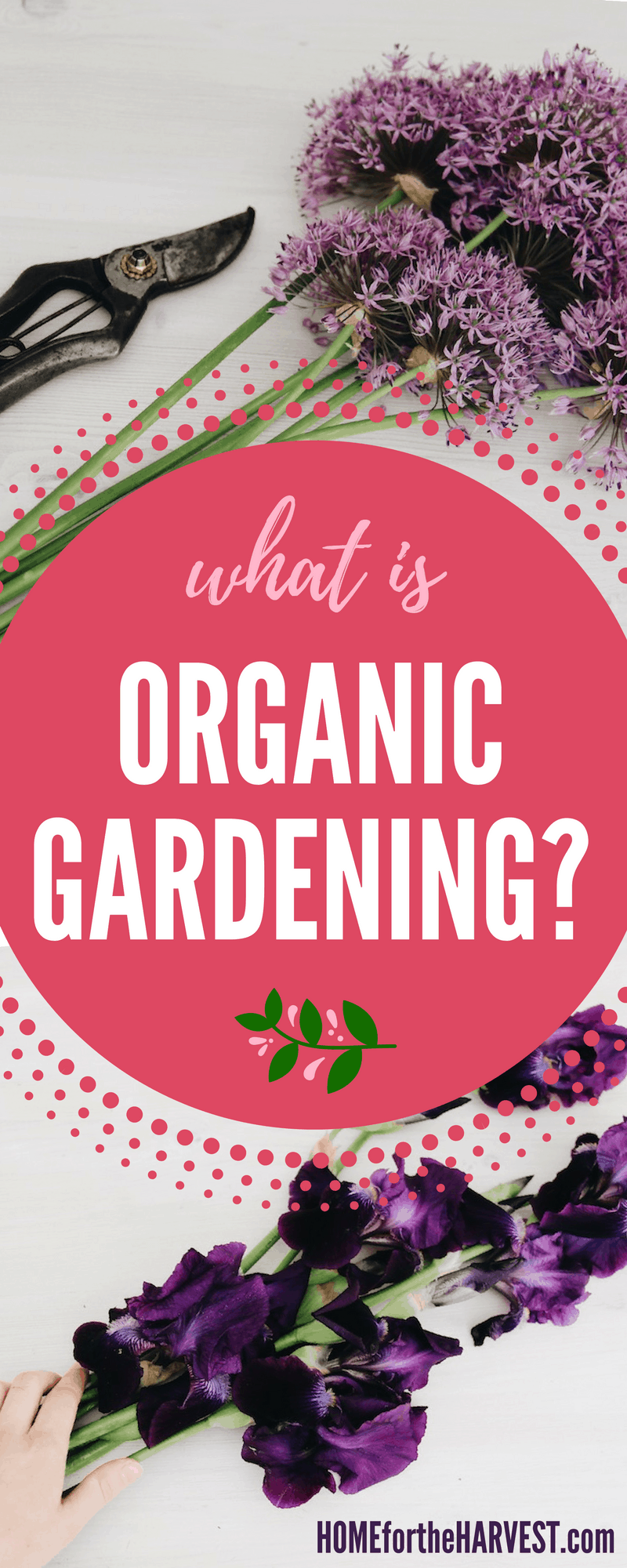 "Wondering ""What is Organic Gardening!?"" This article explains how organic gardening is different than conventional gardening, as well as reasons why organic gardening is wonderful! 