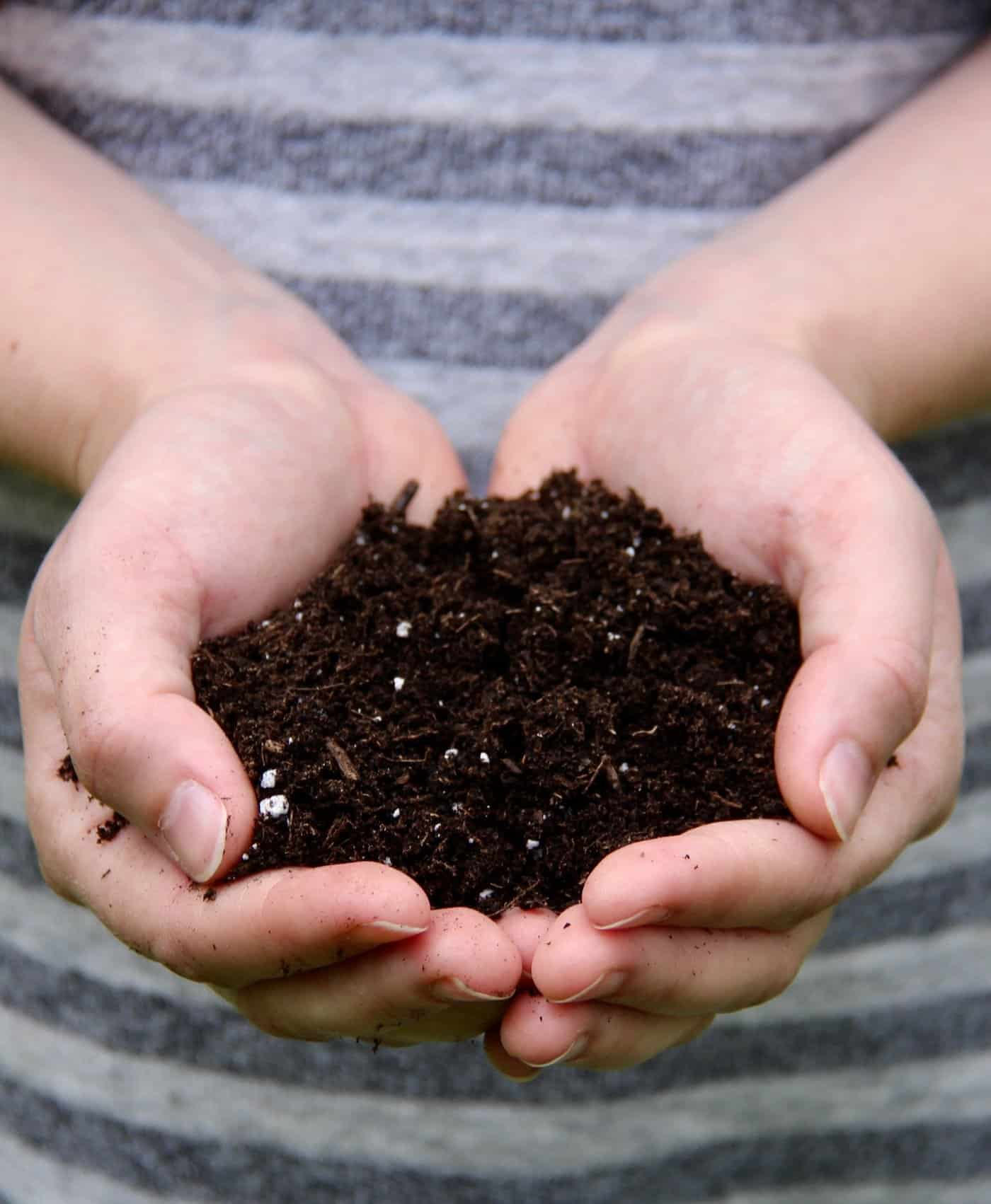 promix soil for organic gardening - soilless potting mix