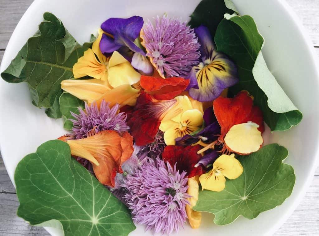 Edible Flower Harvest - Witch's Garden