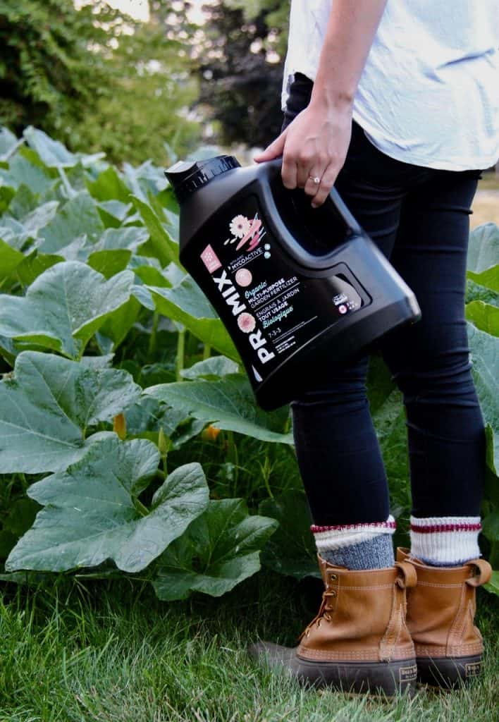 General Purpose Organic Fertilizer