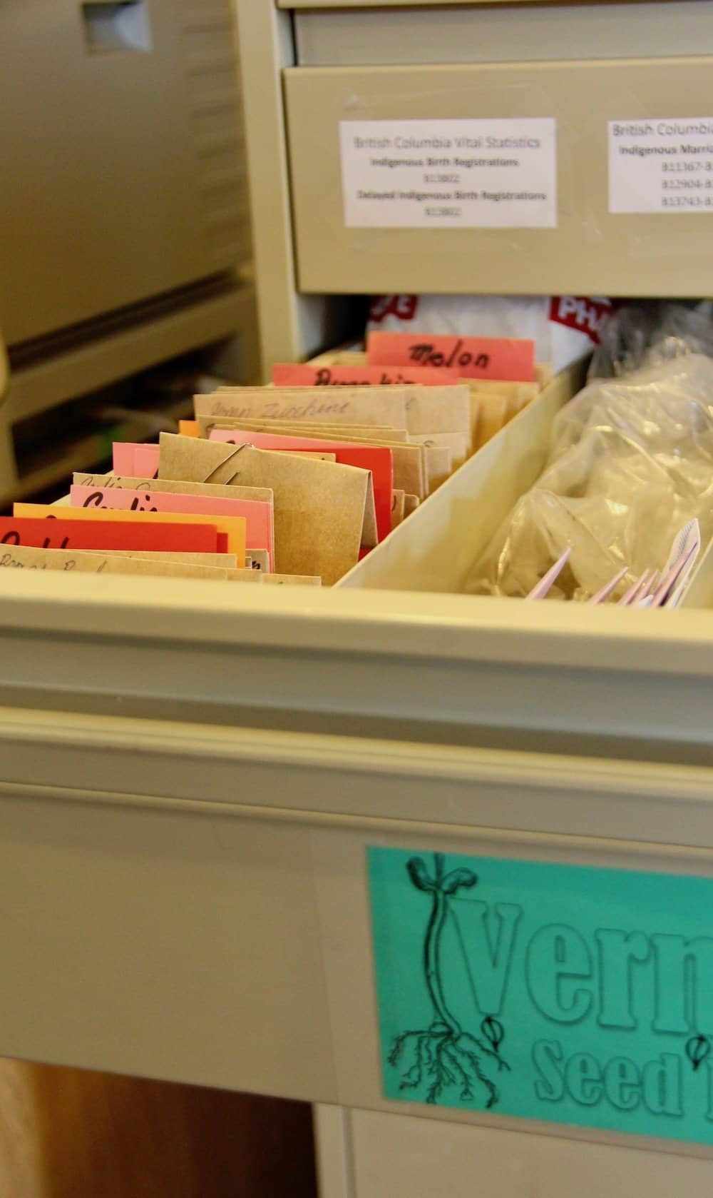 open seed library drawer showing packets and labels from the free seed collection
