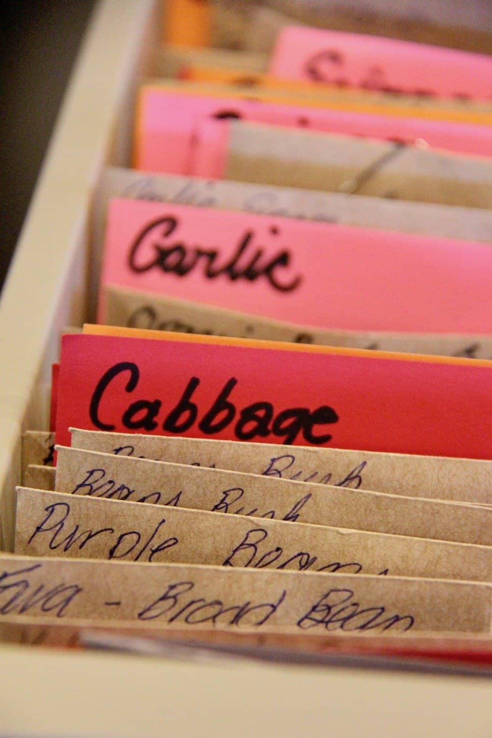 seed collection of seed packets and labels at the okanagan regional library