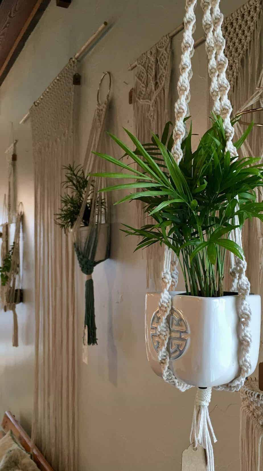 How To Macrame Plant Hanger Diy