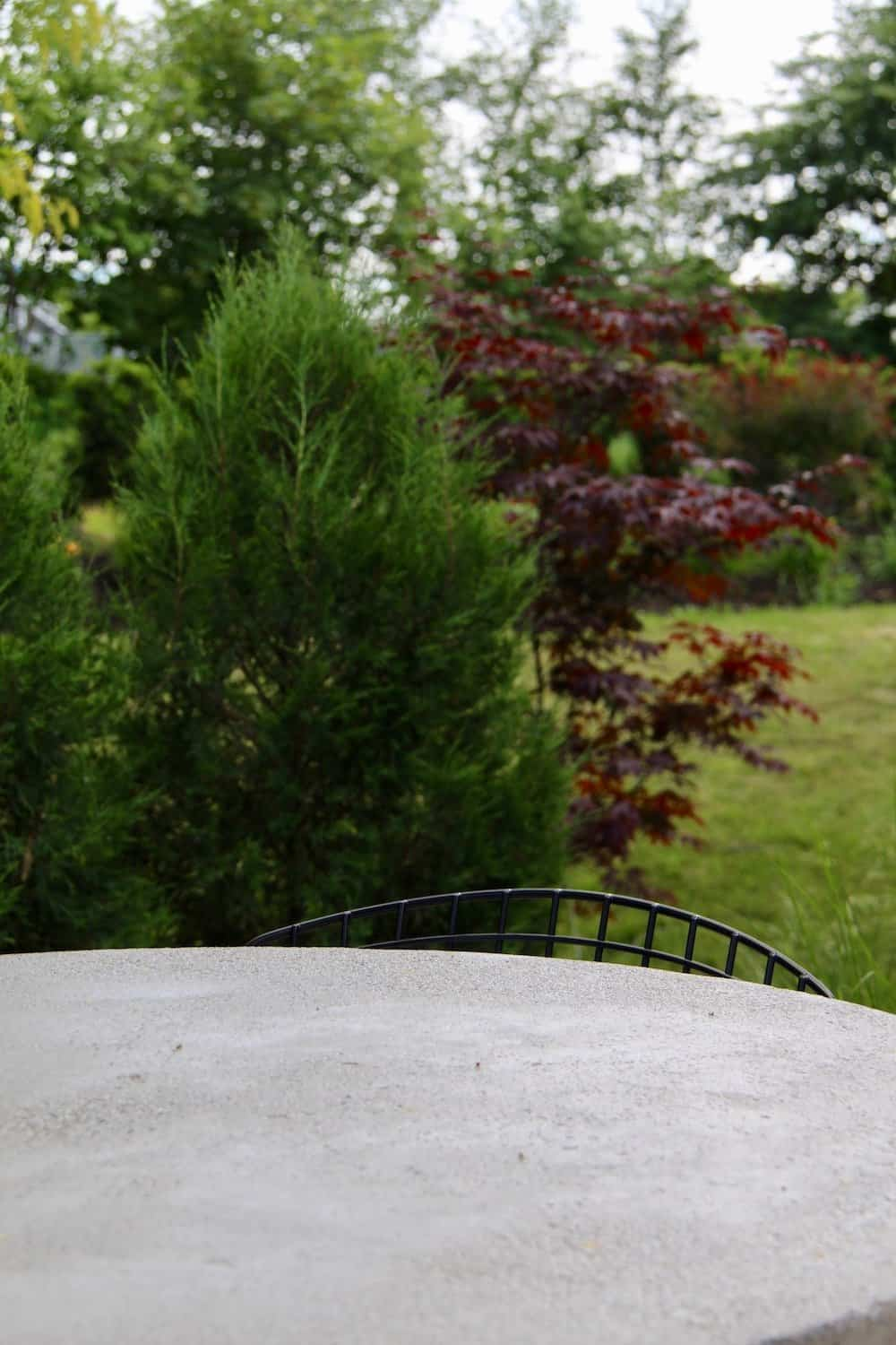 Concrete patio table top with evergreen junipers and japanese maple