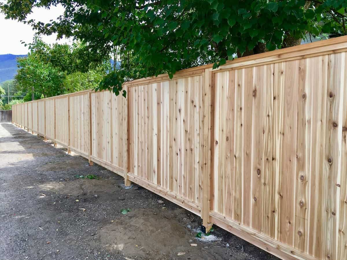Privacy Fence Using Wood Fence Panels To Create Privacy
