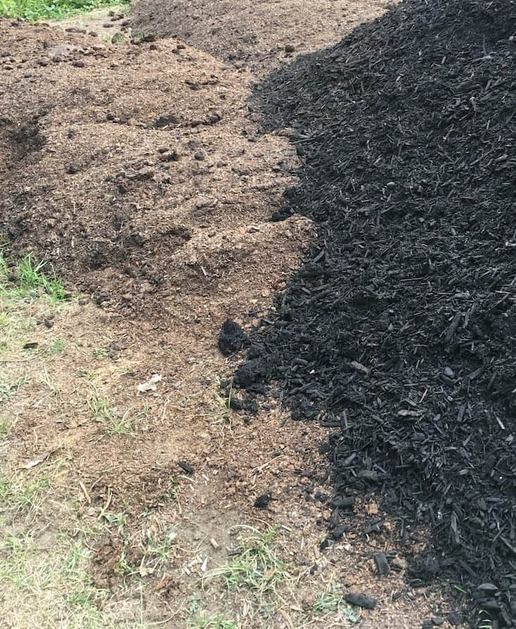 Black Mulch vs Bark Mulch
