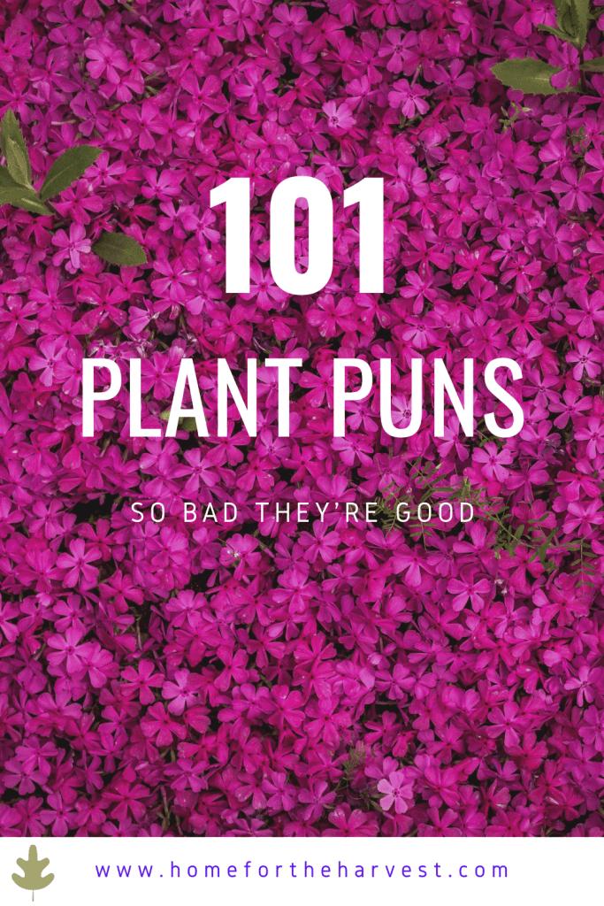 101 Plant Puns