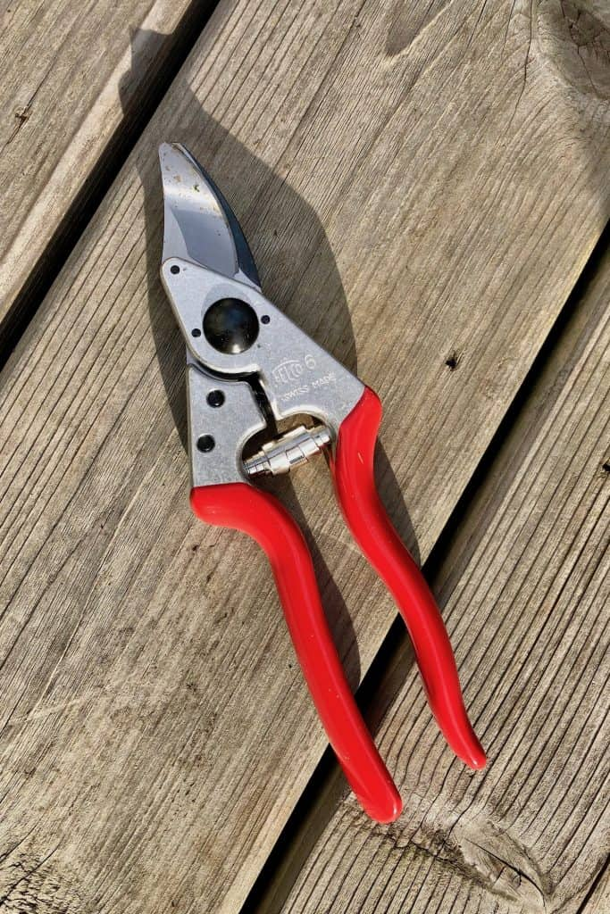 Really Nice Pruners to Give to a Garden Lover