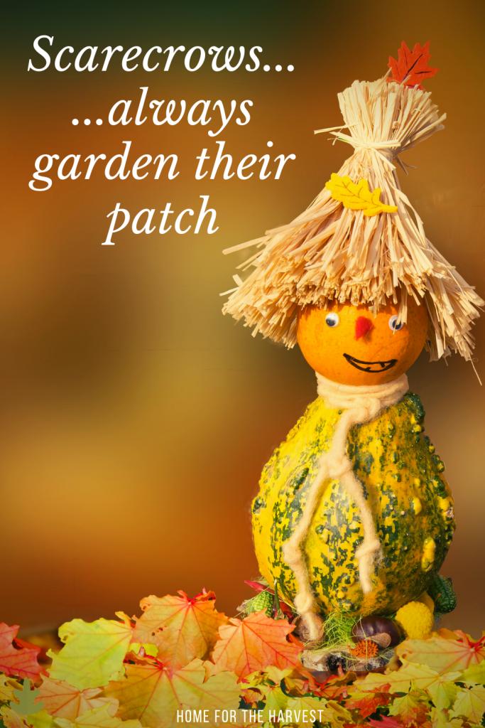 Scarecrows ...always garden their patch