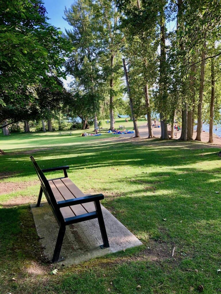 Empty Bench by Lawn in Park Beside a Lake