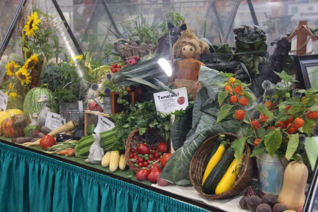 Fall Fair Produce Display