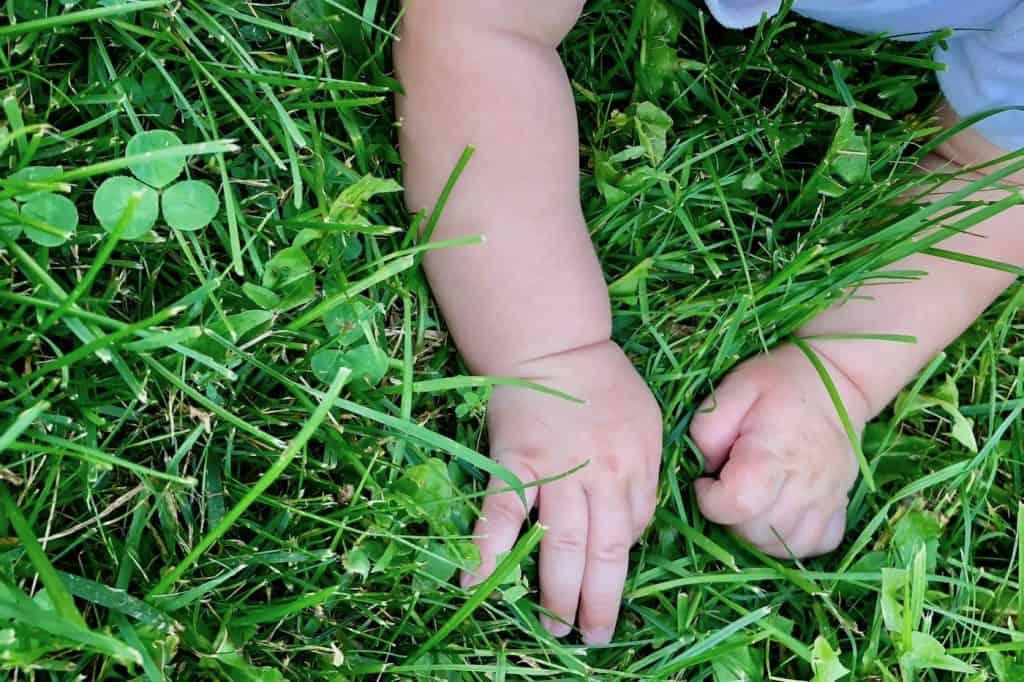 Organic Fertilizer - Safe for Kids & Pets
