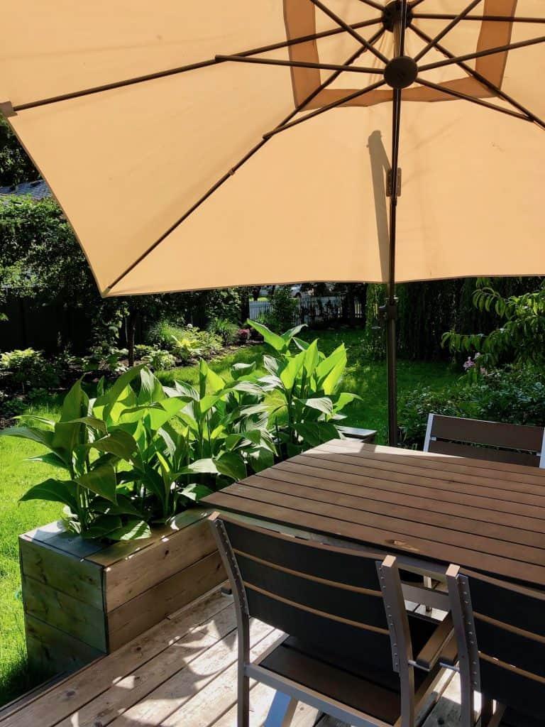 Sun Umbrella and Patio Table on Backyard Deck
