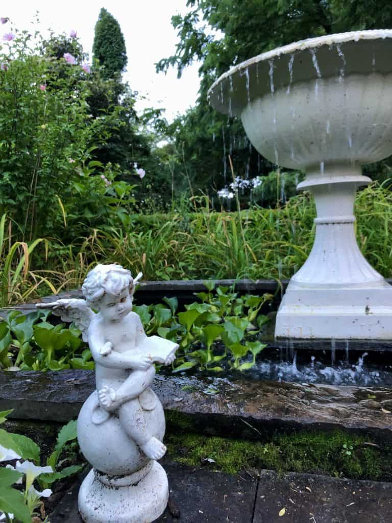 Moss Growing Below Garden Fountain