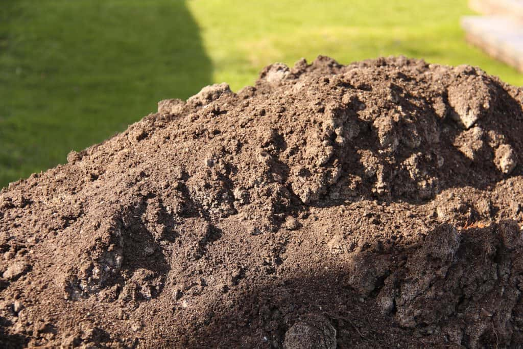 Sand for Top-Dressing Lawn Soil