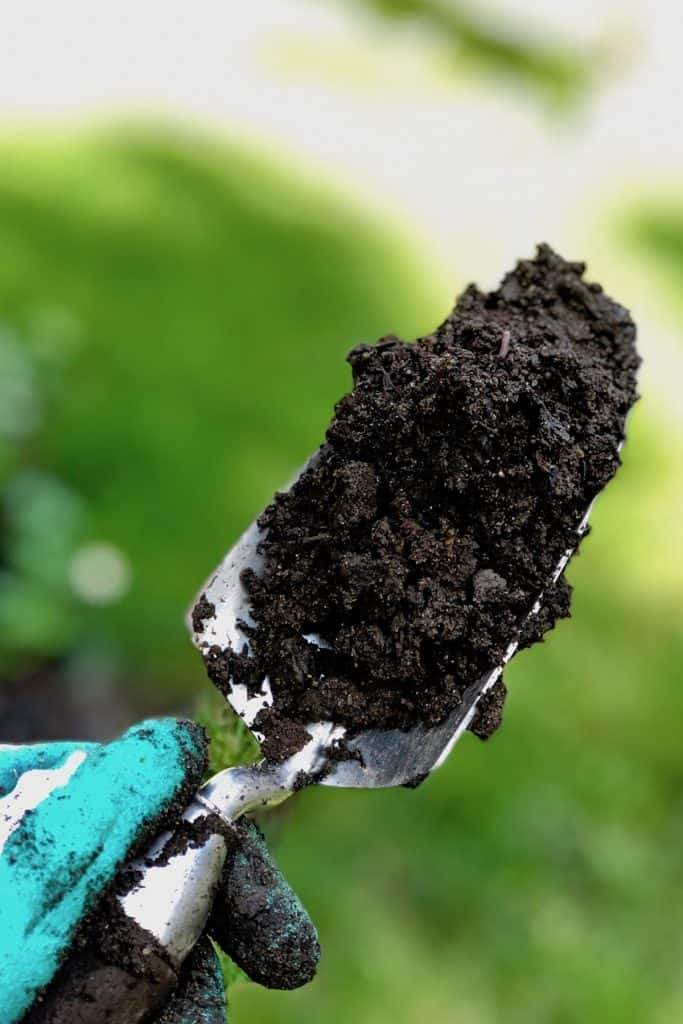 soil test for home garden soil