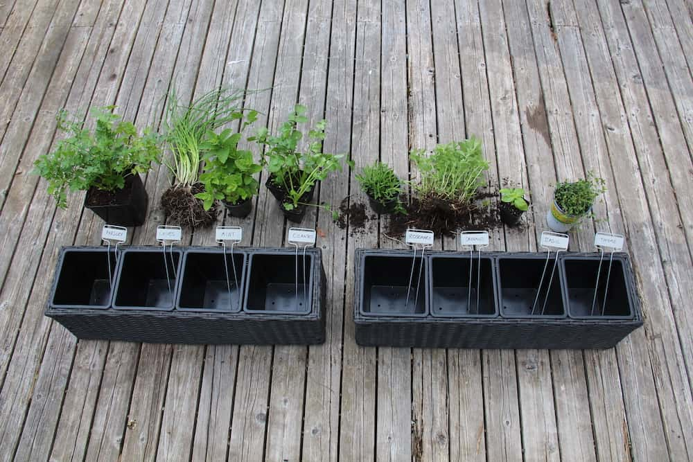Herb planters with individual divided compartments for each herb being planted