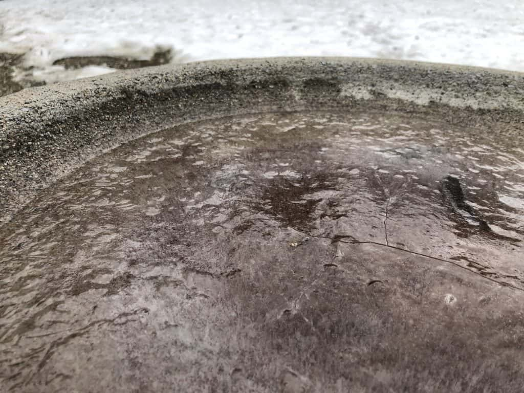 Ice Forming in Concrete Bird Bath in Winter with Snow in Background