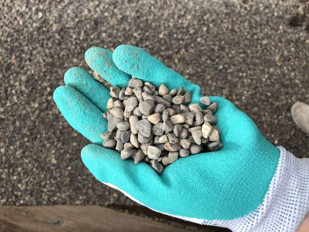 Pea gravel up close - shown held in hand with gardening gloves
