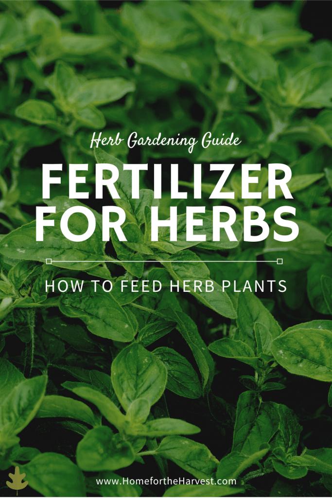 fertilizer for herbs
