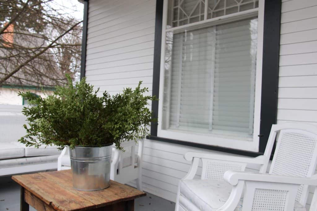 Long Boxwood stems in a galvanized metal bucket on the front porch for making wreaths