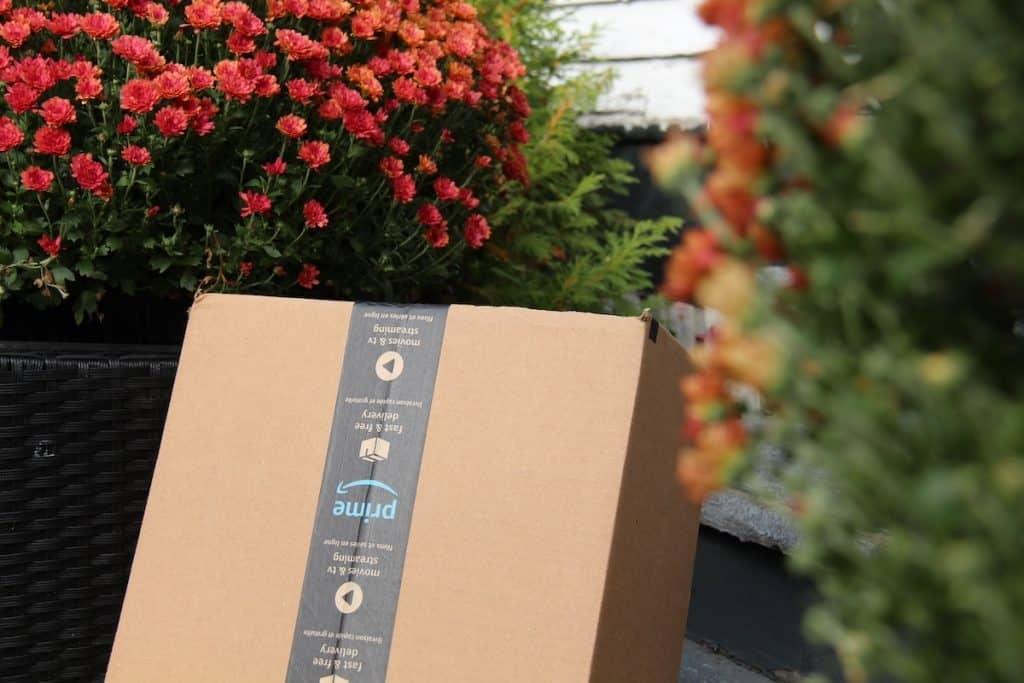 November gardening gift shopping for holidays