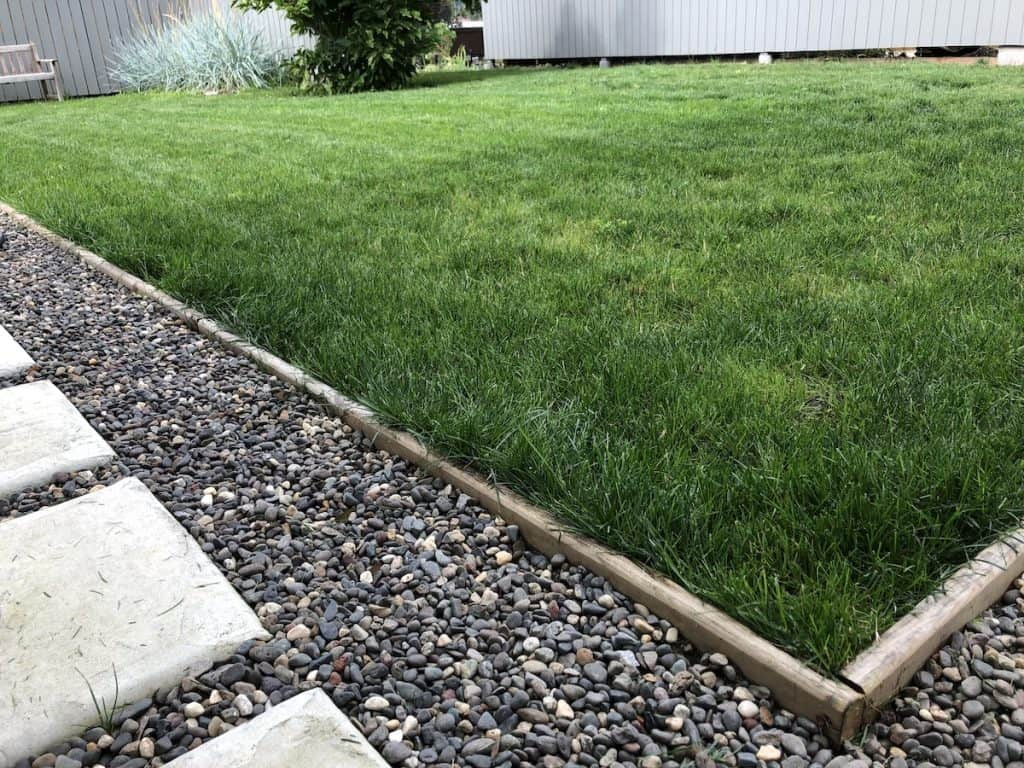cedar wood 2x6 edging for lawn