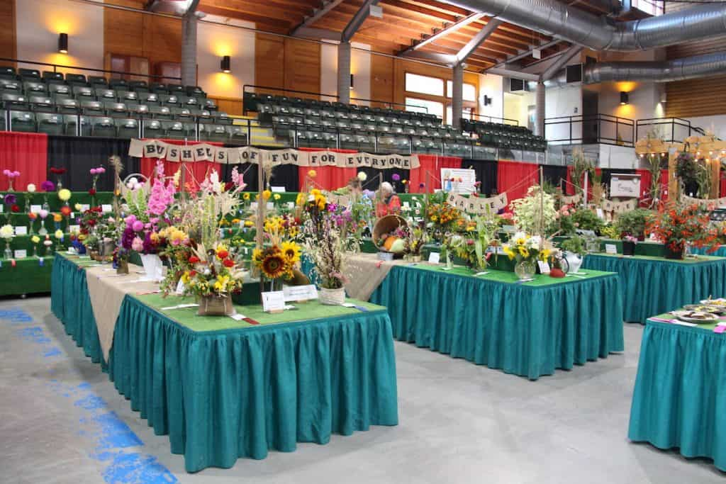 fall fair - flower exhibition