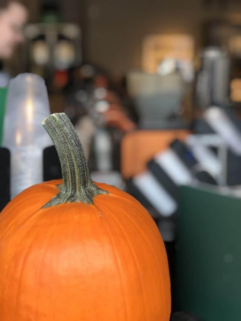orange pumpkin with barista in background
