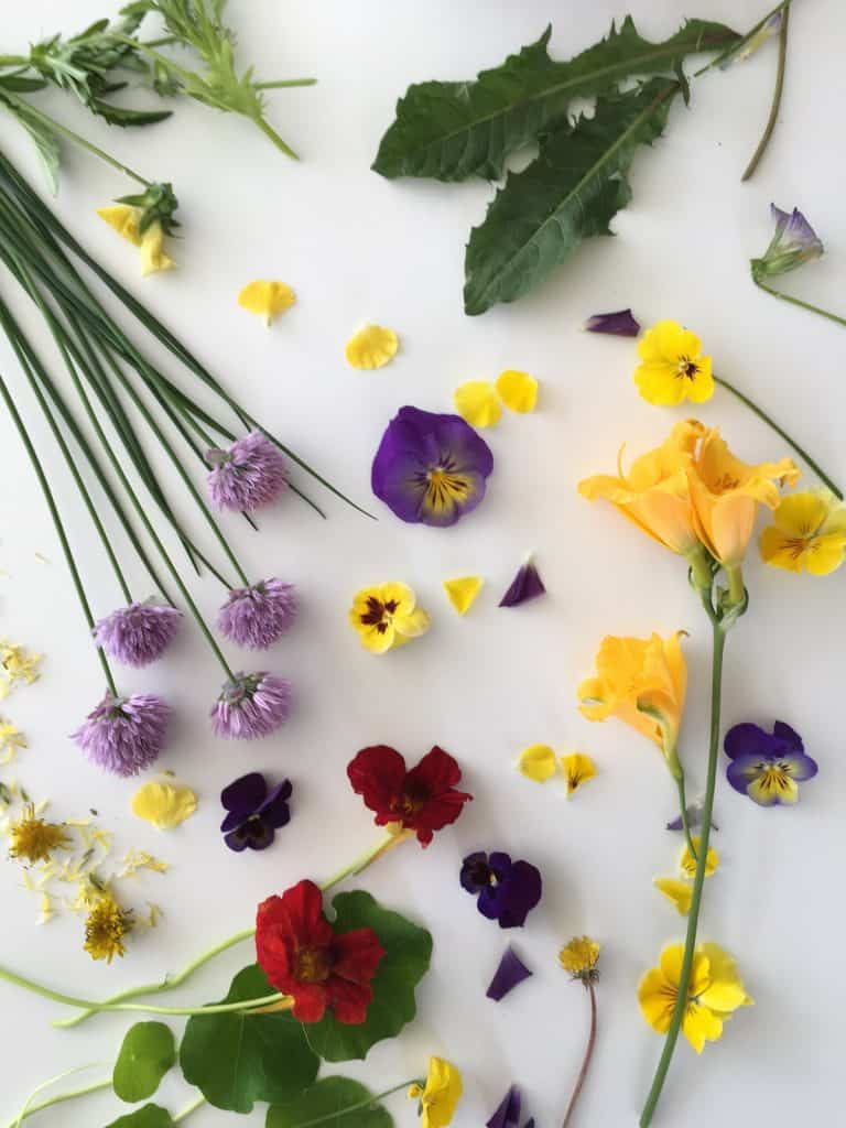 Edible flowers from the July summertime garden