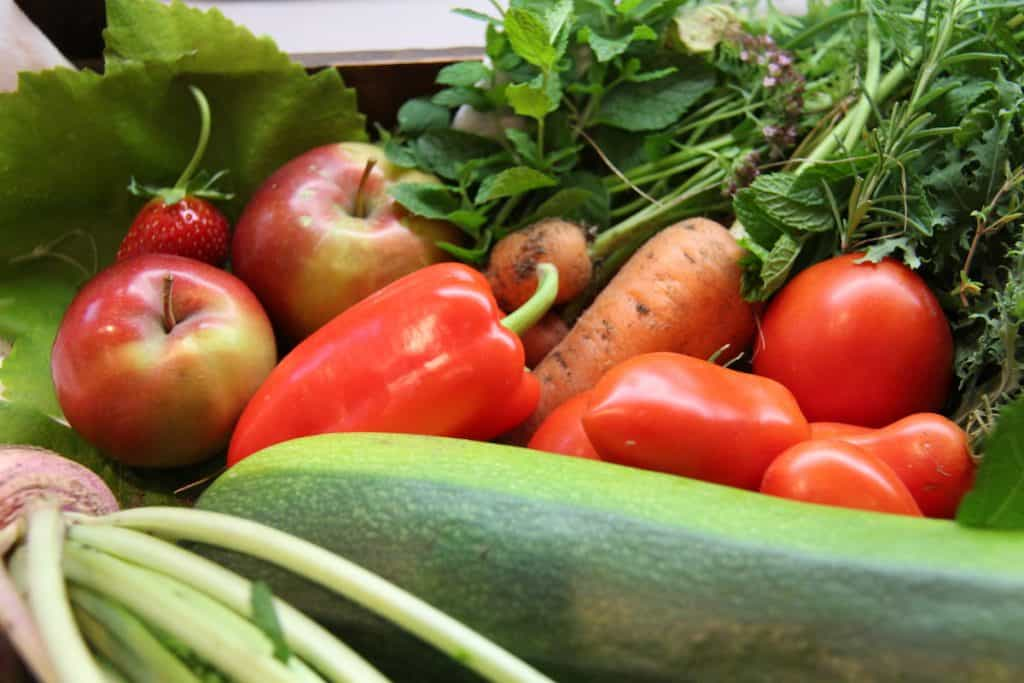late summer vegetable harvest from the kitchen garden