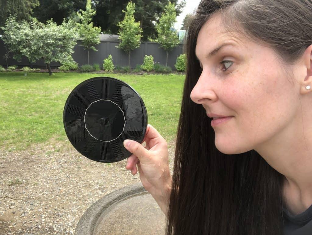 testing out a solar bird bath fountain
