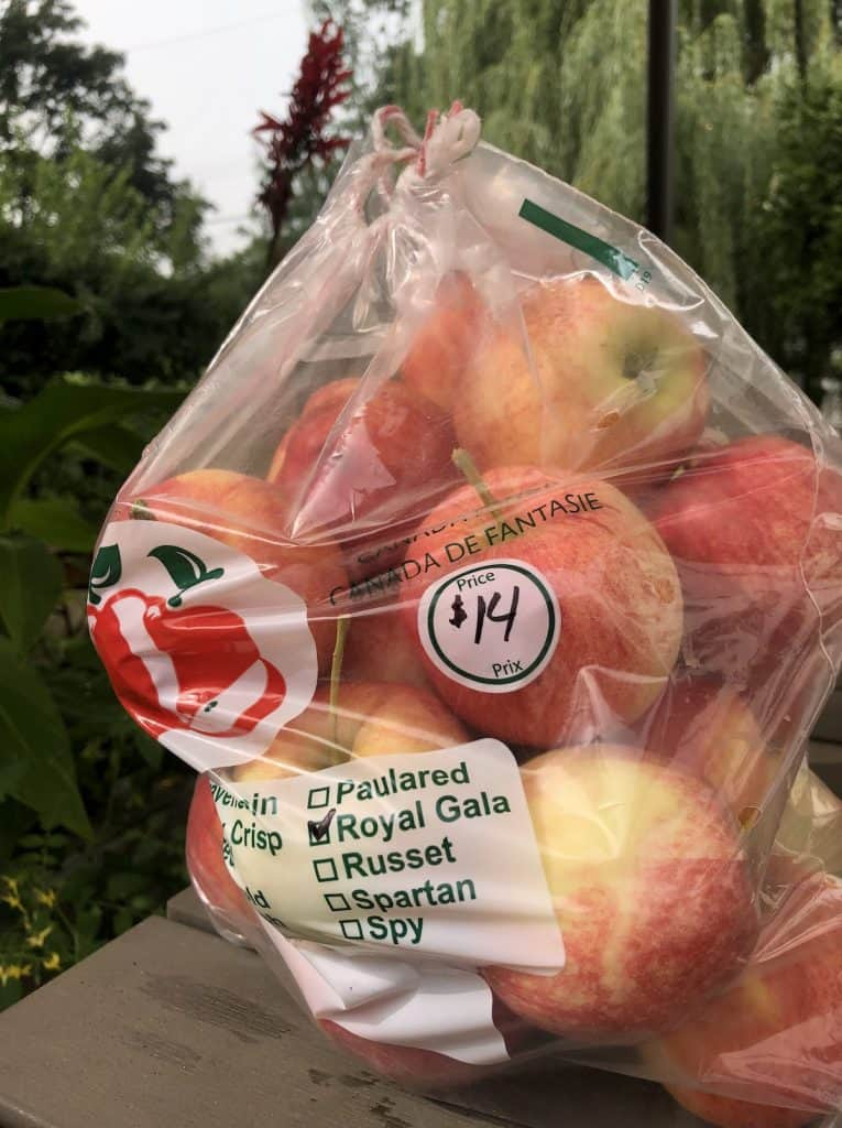 10-lb bag of apples