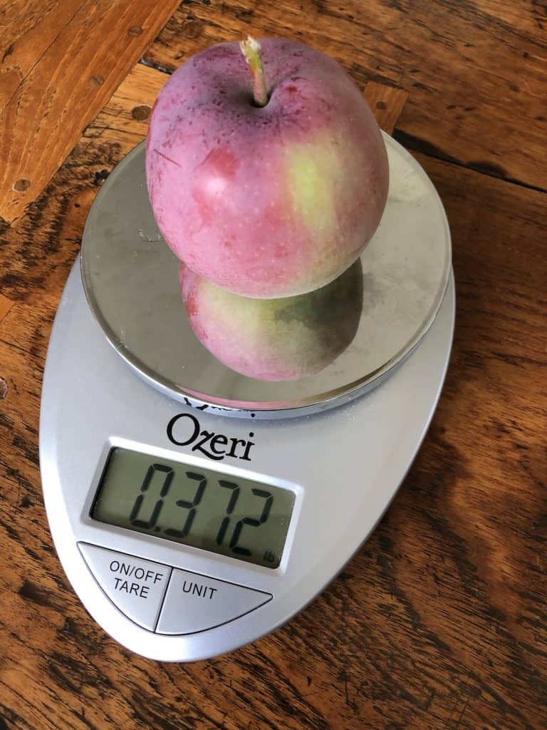One McIntosh Apple Weighs 1/3 of a Pound
