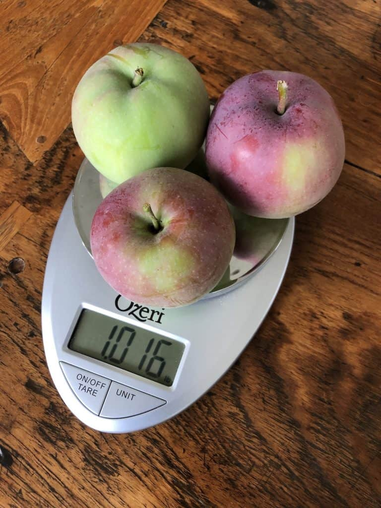 One Pound Of McIntosh Apples