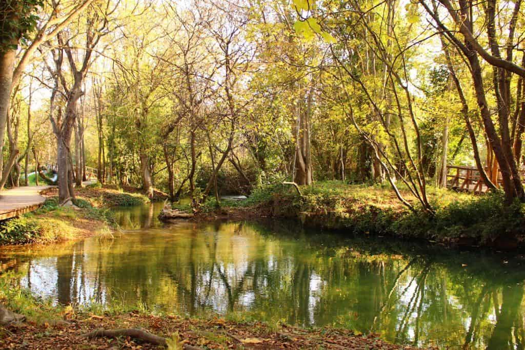 Serene pond at a large meditation garden