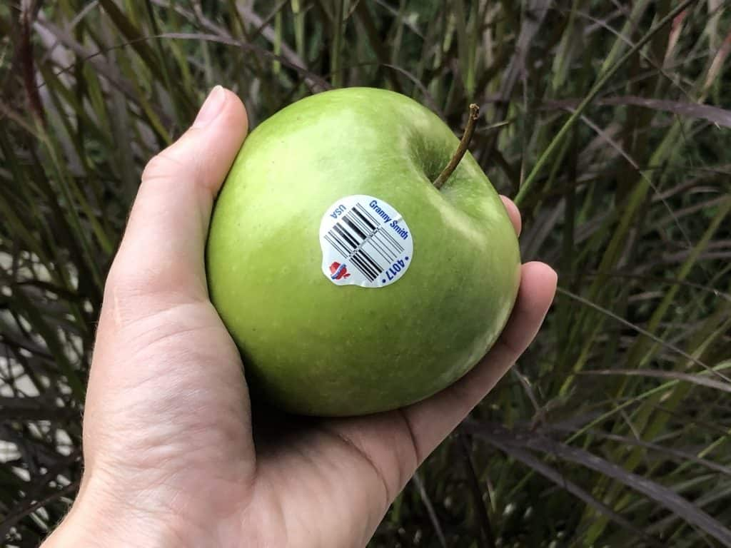 hand holding a granny smith apple