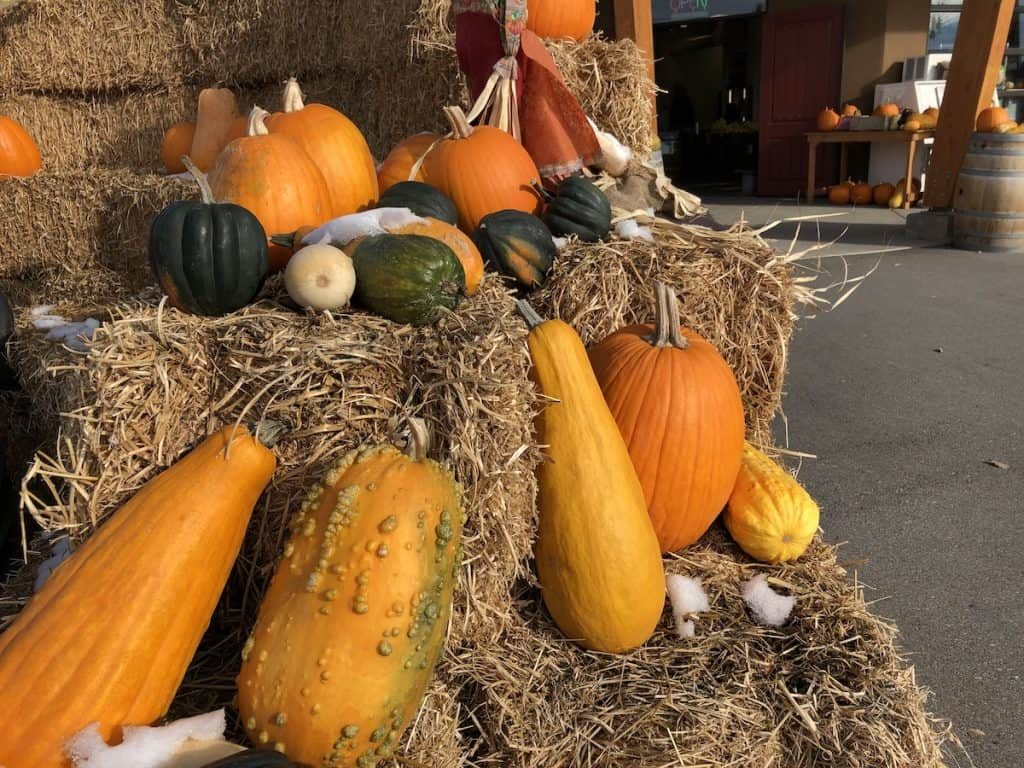 Autumn seasonal curb appeal decor with decorative squash, pumpkins, and hay bales